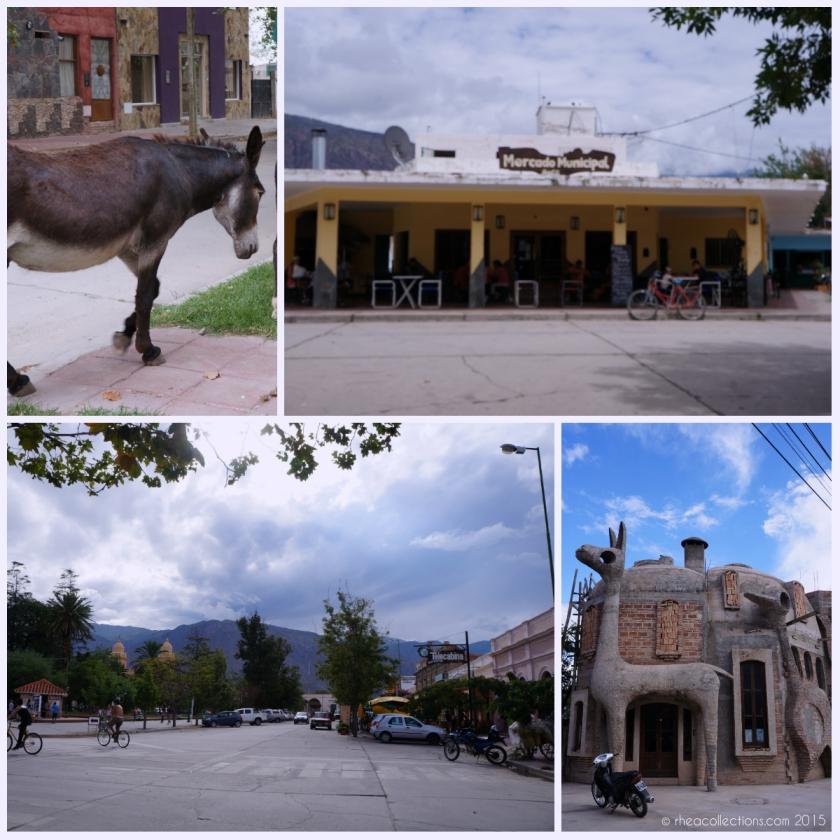 L to R: Donkeys roaming the streets freely |Mercado Municipal de Cafayate | Main plaza | Llama/Vicuna & Bird design building