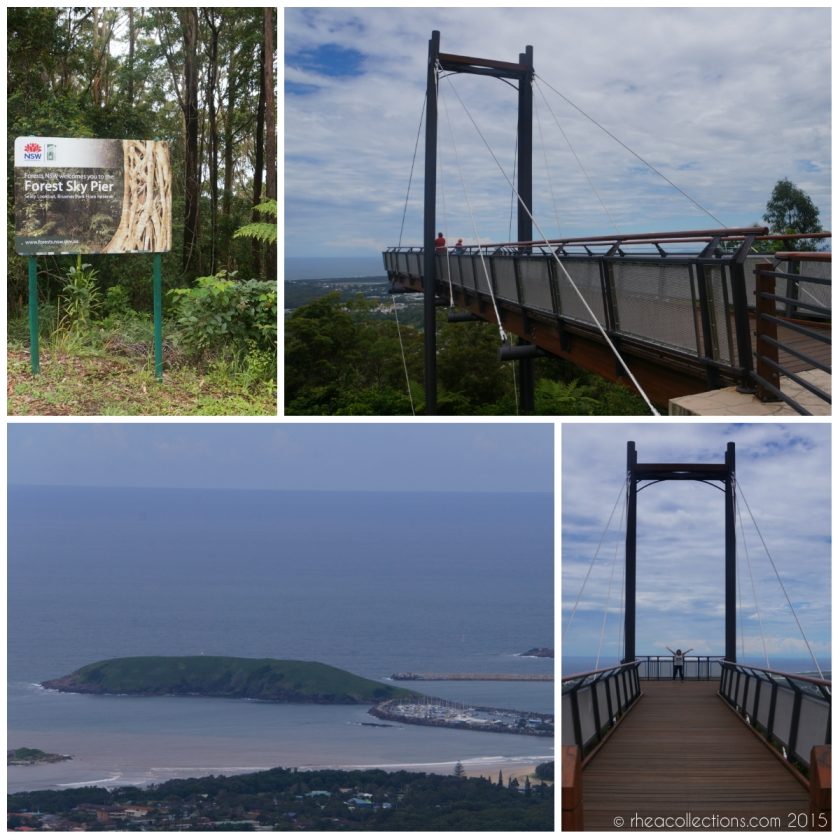 Forest Sky Pier / Sealy Lookout / Bruxner Park Flora Reserve