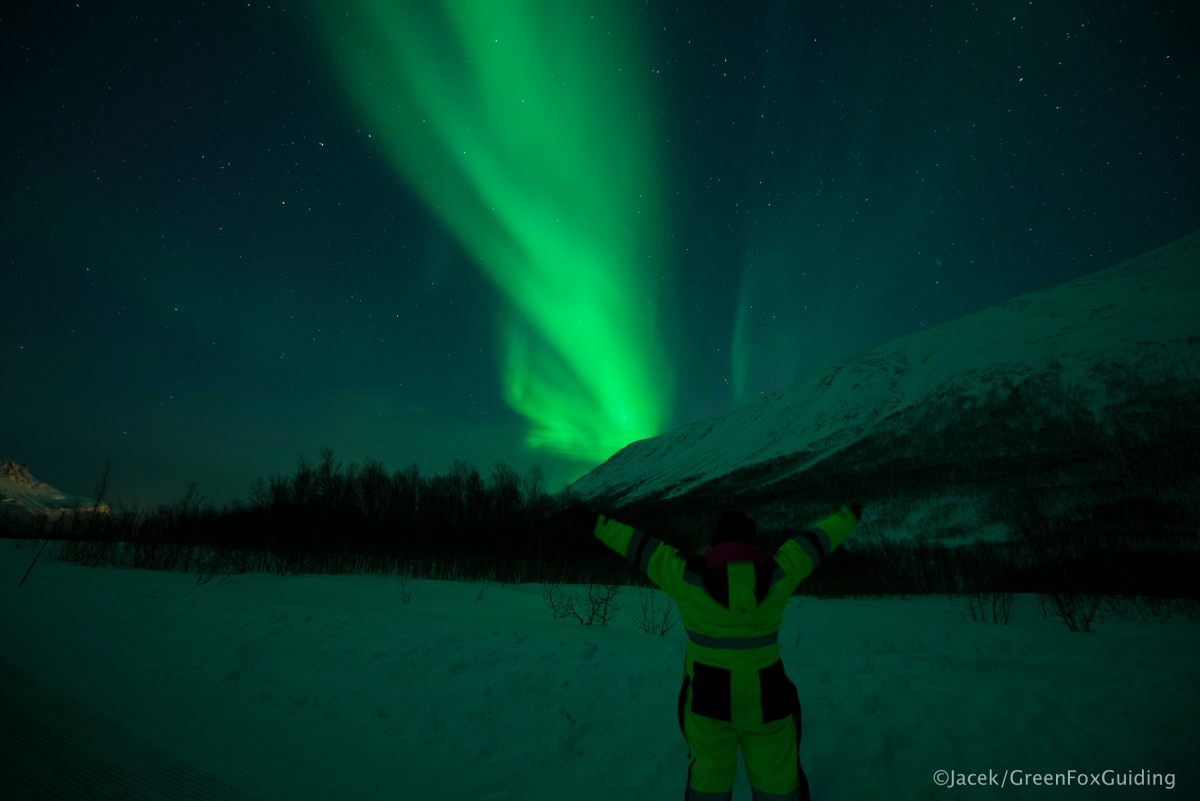 3 Unforgettable Nights with The Green Lady | Hunting the northern lights |Tromsø, Norway